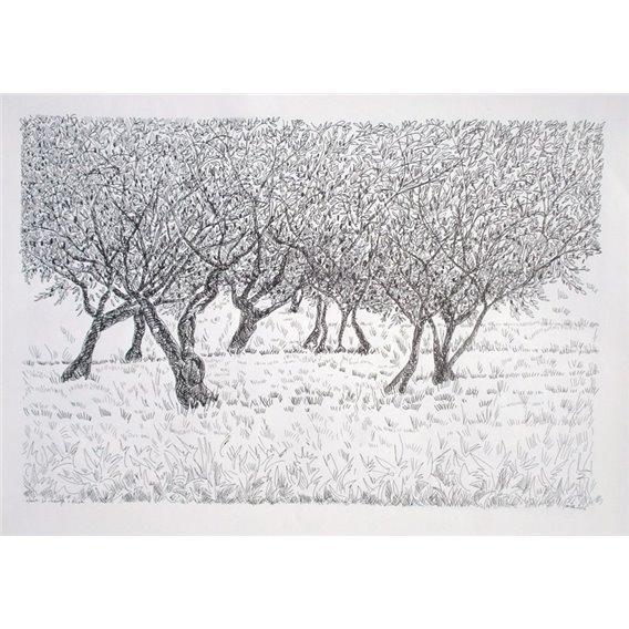 Trees n°2