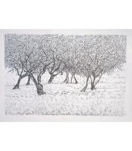 Les arbres n°2