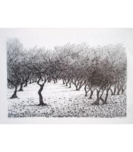 Trees n°1