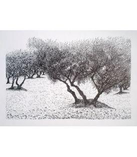 Les arbres n°4