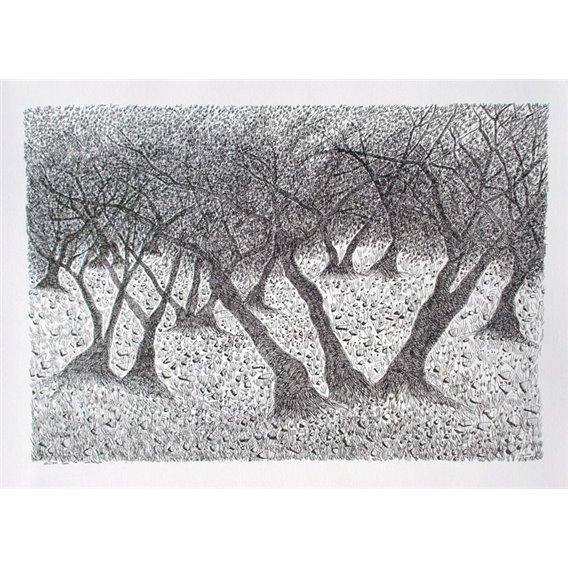 Trees n°5