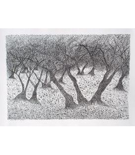 Les arbres n°5