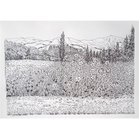 Les fleurs devant la montagne