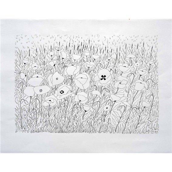 Poppies n°5