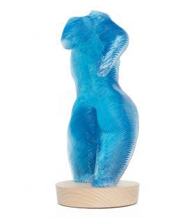Roxie, la topologie du torse - Bleue n°2/20