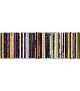 Blue Poles - Jackson Pollock - Bande son n°77 - Tableau de Didier delgado
