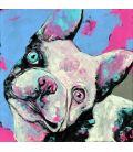 Gachette - The Bulldog