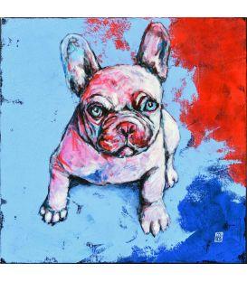 Gachette - Le bouledogue n°6